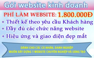 Mẫu website 1.800.000